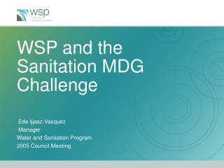 WSP and the Sanitation MDG Challenge