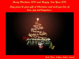Merry Christmas 2010 and Happy New Year 2011.