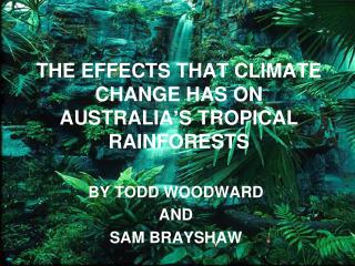 THE EFFECTS THAT CLIMATE CHANGE HAS ON AUSTRALIA'S TROPICAL RAINFORESTS