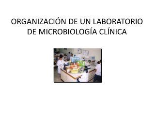 ORGANIZACIÓN DE UN LABORATORIO DE MICROBIOLOGÍA CLÍNICA