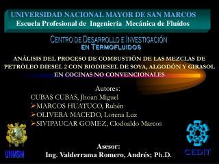 Autores: CUBAS CUBAS, Jhoan Miguel  MARCOS HUATUCO, Rubén OLIVERA MACEDO, Lorena Luz