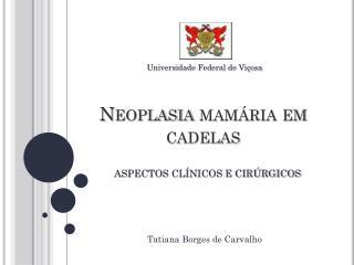 Neoplasia mamária em cadelas