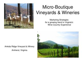 Micro-Boutique Vineyards & Wineries
