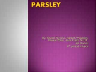 By: Khunal Parkash, Hannah Windham, Chance Polan, Anna Claire Terrill`  MR Martell