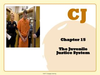Chapter 15 The Juvenile Justice System