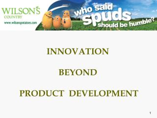 INNOVATION BEYOND  PRODUCT  DEVELOPMENT