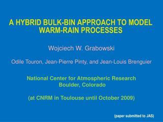 A HYBRID BULK-BIN APPROACH TO MODEL WARM-RAIN PROCESSES