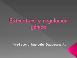Estructura y regulación génica