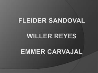FLEIDER SANDOVAL WILLER REYES EMMER CARVAJAL
