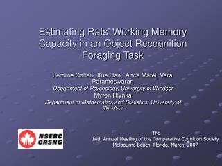 Estimating Rats' Working Memory Capacity in an Object Recognition Foraging Task