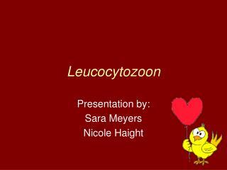 Leucocytozoon