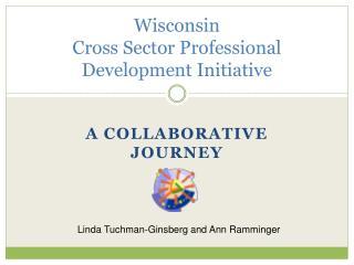 Wisconsin  Cross Sector Professional Development Initiative