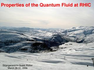 Properties of the Quantum Fluid at RHIC