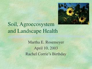 Soil, Agroecosystem  and Landscape Health