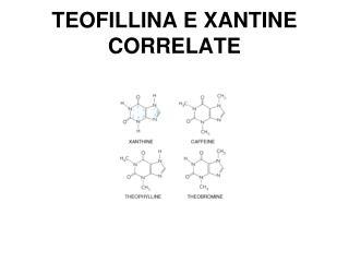 TEOFILLINA E XANTINE CORRELATE