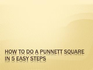 How to do a  Punnett  Square in 5 Easy Steps
