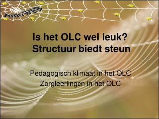 Is het OLC wel leuk?  Structuur biedt steun