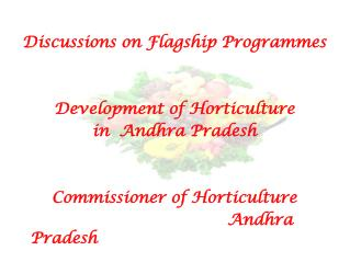 Discussions on Flagship Programmes Development of Horticulture   in  Andhra Pradesh