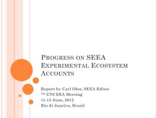 Progress on SEEA Experimental Ecosystem Accounts
