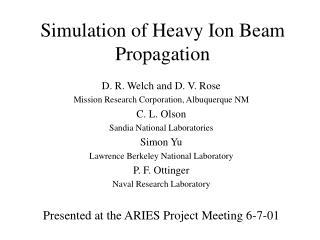 Simulation of Heavy Ion Beam Propagation