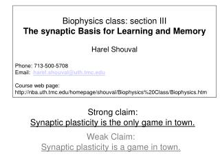 Strong claim:    Synaptic plasticity is the only game in town.