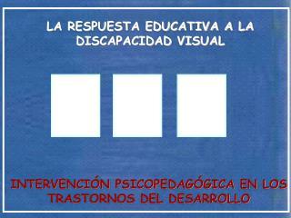 LA RESPUESTA EDUCATIVA A LA DISCAPACIDAD VISUAL