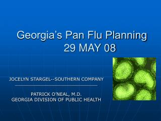 Georgia's Pan Flu Planning 	29 MAY 08