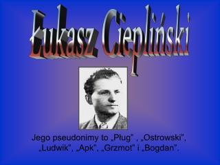 """Jego pseudonimy to """"Pług"""" , """"Ostrowski"""", """"Ludwik"""", """"Apk"""", """"Grzmot"""" i """"Bogdan""""."""