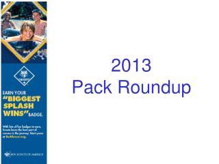 2013  Pack Roundup