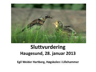 Sluttvurdering Haugesund, 28. januar 2013 Egil Weider Hartberg, Høgskolen i Lillehammer