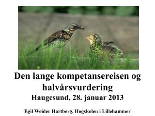 Den  lange kompetansereisen og  halvårsvurdering  Haugesund, 28. januar 2013