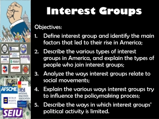 Interest Groups: Groups of like minded individuals who band  together to influence public policy