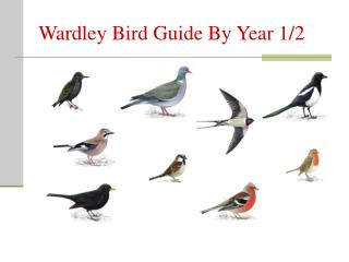 Wardley Bird Guide By Year 1/2
