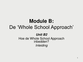 Module B: De 'Whole School Approach'