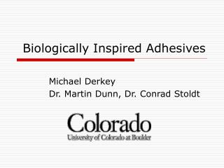 Biologically Inspired Adhesives