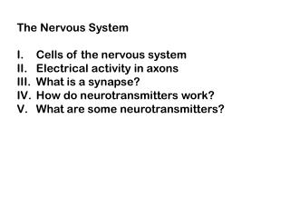 The Nervous System Cells of the nervous system Electrical activity in axons What is a synapse?