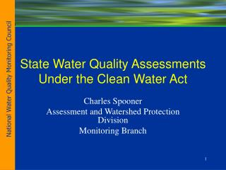 State Water Quality Assessments Under the Clean Water Act
