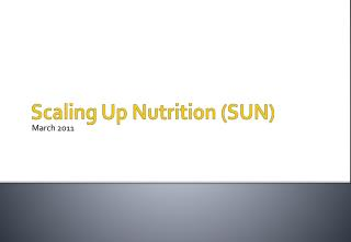 Scaling Up Nutrition (SUN)