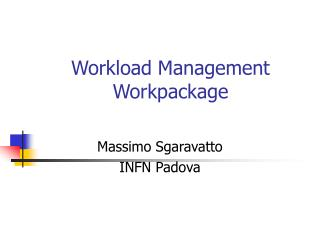 Workload Management Workpackage