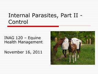 Internal Parasites, Part II - Control