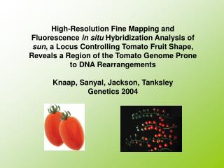 High-Resolution Fine Mapping and Fluorescence in situ Hybridization Analysis of sun, a Locus Controlling Tomato Fruit Sh