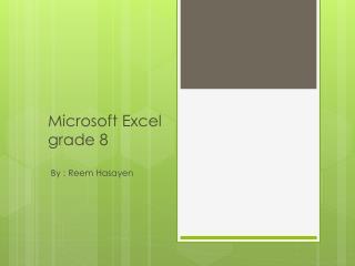 Microsoft Excel grade 8