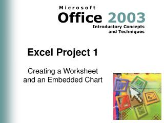 Excel Project 1