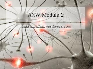 ANW Module 2