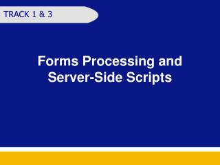 Forms Processing and  Server-Side Scripts