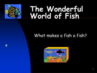 The Wonderful World of Fish