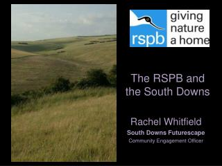 The RSPB and the South Downs