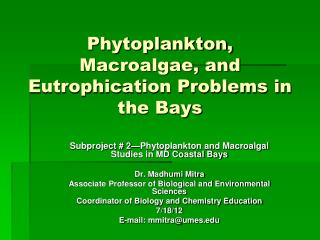 Phytoplankton, Macroalgae, and Eutrophication Problems in the Bays