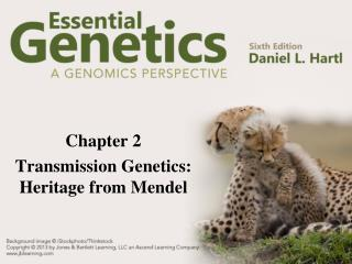 Chapter 2 Transmission Genetics: Heritage from Mendel