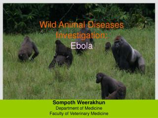 Wild Animal Diseases Investigation:  Ebola